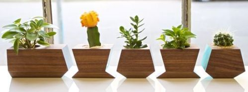 d01155b60155eb86_5356-w548-h206-b0-p0--modern-indoor-pots-and-planters