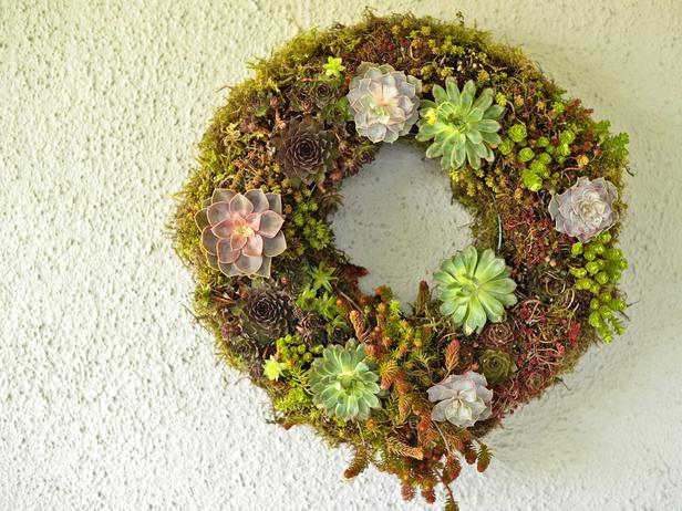 CI_Kim-Foren-Geranium-Lake-Succulent-Easter-Arrangement-Wreath-Beauty_s4x3_lg