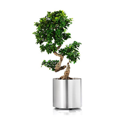 Blomus GREENS Planter