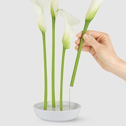 Blossom Vase
