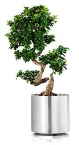 1planter